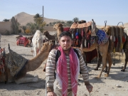 camel;caravan;Palmyra-Syria;desert;middle-east;disabled;disability;male;man;crutches