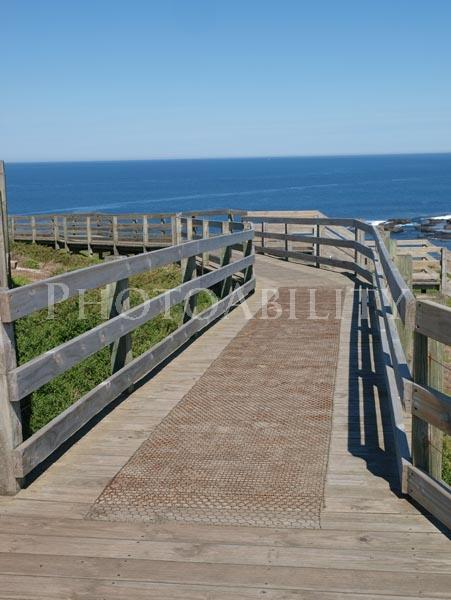 Nobbies, Phillip Island