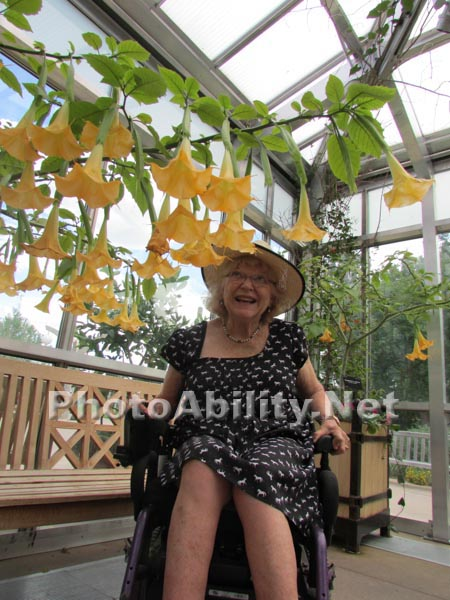 Woman in a wheelchair tending her plants in her conservatory
