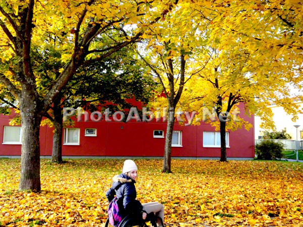 Young woman using a wheelchair in a park covered in fallen autumn leaves