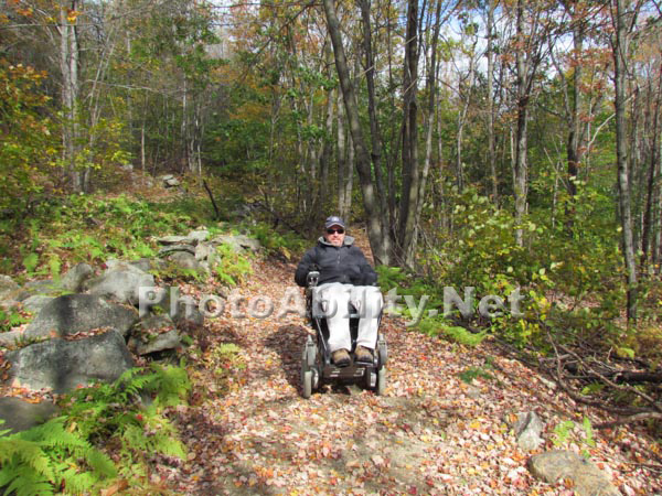 Man in a power wheelchair enjoying a forest trail