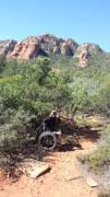 Man-using-wheelchair-exploring-desert-national-park