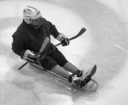 Man-playing-sled-hockey