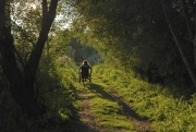 Woman-in-wheelchair-on-country-trail-as-the-sun-sets