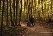 Woman-in-wheelchair-on-forest-trail