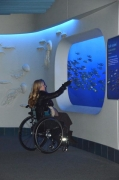 Woman-in-wheelchair-at-the-Monterey-Aquarium