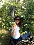 Young-woman-in-wheelchair-picking-apples-in-an-orchard