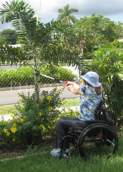 Woman in a wheelchair tending her garden
