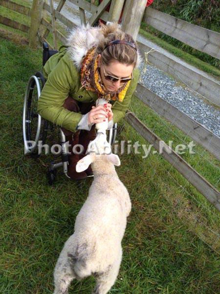Woman in wheelchair feeding a baby animal