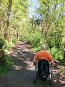 Man-using-wheelchair-on-forest-trail