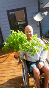 Man-using-wheelchair-with-his-garden-harvest