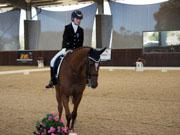 Boneo-Park,-Melbourne,-Australia.-18-October,-2017.-Equestrian-Australia-Para-Equestrian-Grade-1-Individual-Competition.-Remi-Faberge-ridden-by-Morgan-Webb-Liddle-Vic.