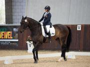 Boneo-Park,-Melbourne,-Australia.-18-October,-2017.-Equestrian-Australia-Para-Equestrian-Grade-2-Individual-Competition.-Tulara-Cabaret-ridden-by-Joann-Formosa-Oam